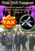 Concert Animal X la Campeni
