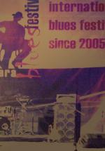 Blues Festival 2010 la Sala Polivalenta Mihai Eminescu din Sighisoara