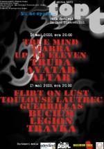 Festivalul Topt T 2010 la Casa Tineretului din Buzău