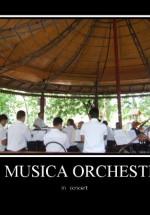 Concert Orchestra La Musica în Parcul Kiseleff şi Parcul Bazilescu din Bucureşti