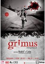 Concert Grimus în Setup Venue din Timişoara