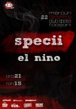 Concert Specii şi El Nino la Club Apollo din Focşani