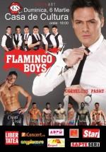 Flamingo Boys la Casa de Cultură din Constanţa