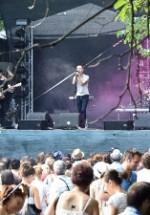 POZE: Summer Well 2011