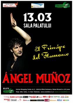 """Ángel Muñoz – """"El principe de Flamenco"""" la Sala Palatului din Bucureşti – ANULAT"""