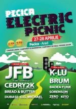Pecica Electric Picnic 2012