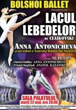 Lacul Lebedelor (Bolshoi Ballet) la Sala Palatului din Bucureşti
