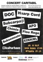 Concert caritabil în Kulturhaus din Bucureşti