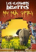 "Turneu Les Elephants Bizarres ""Nu mă opri"""
