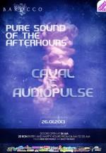 AudioPulse în Barocco Bar din Bucureşti