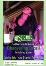 Concert Cătălina Beta – Discovering Brasil – în Mystic Tree din Bucureşti