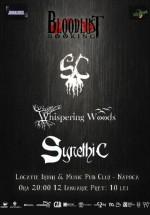 Scarecrown, Whispering Woods şi Synethic în Irish Music & Pub din Cluj-Napoca