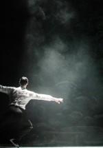 lacul-lebedelor-sala-palatului-bucuresti-01