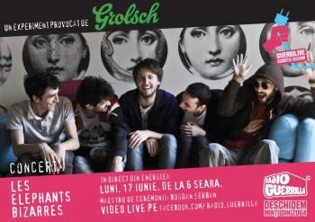 Concert Les Elephants Bizarres la GuerriLIVE Acoustic Session în Energiea din Bucureşti