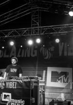 10-blazing-vibez-bestfest-2013-bucuresti-2