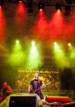 biohazard-bestfest-2013-bucuresti-tunari-11
