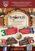 Festivalul Internaţional al Viei şi Vinului Bachus 2013