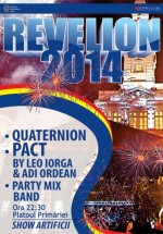 Revelion 2014 pe Platoul Primăriei din Arad