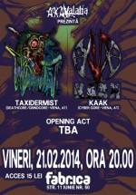 Concert Taxidermist şi KaaK în Club Fabrica din Bucureşti