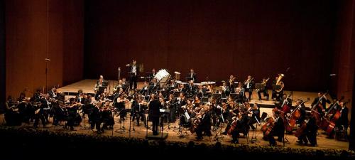 """Orchestra Simfonică Bucureşti prezintă proiectul """"Pe Aripile Muzicii"""", în aprilie 2014"""