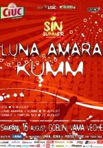 Concerte Luna Amară şi Kumm la Goblin din Vama Veche