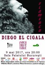 Concert Diego el Cigala la Sala Palatului din Bucureşti